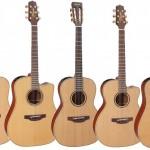 Akustiskās ģitāras korpusa formas