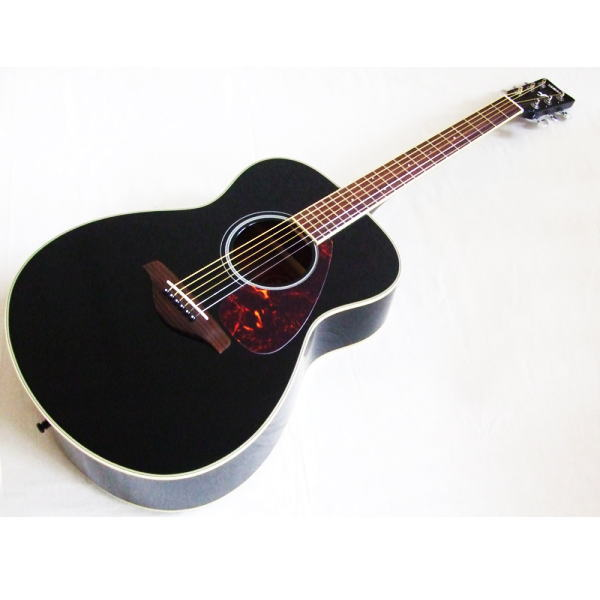 Akustiska gitara 3