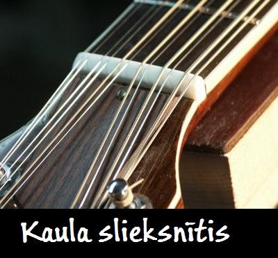 Kaula ģitāras slieksnītis