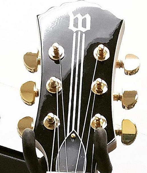 Zaka vailda gitara 1