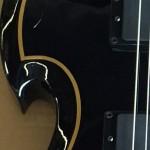 Zaka vailda gitara 2