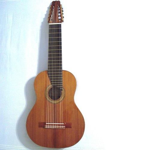desmit stīgu  ģitāra gitarspele.lv