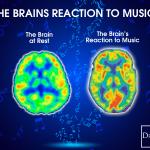 5 iemesli kādēļ ir labi apgūt mūzikas instrumentu spēli